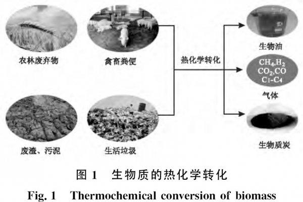 废弃生物质水热炭化技术及其产物在废水处理中的应用进展